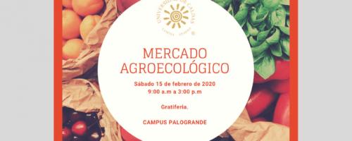 MERCADO-AGROECOLOGICO-compressor