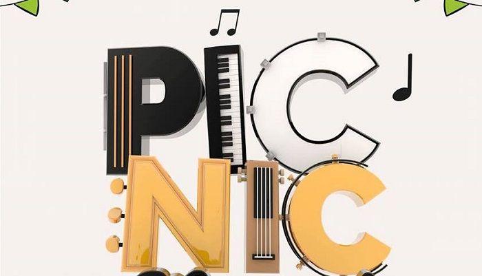 picnic-compressor