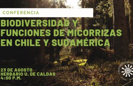 biodiversidad-y-funciones-de-micorrizas-compressor