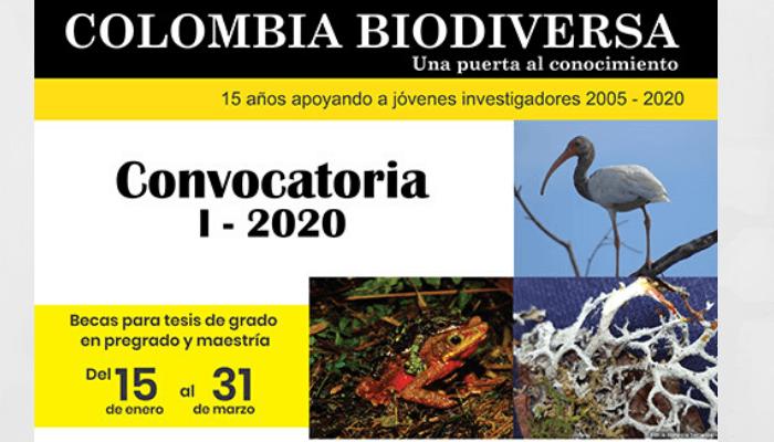COLOMBIA-BIODIVERSA-compressor