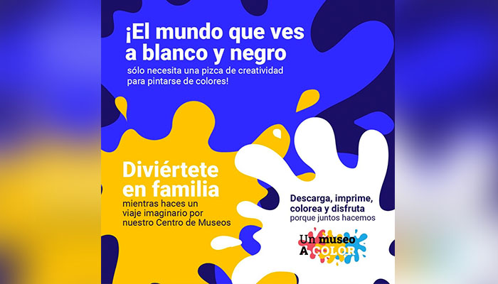 museo color