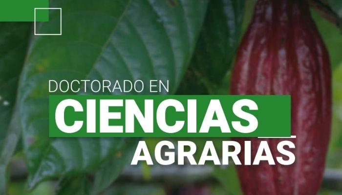 doctorado agrarias